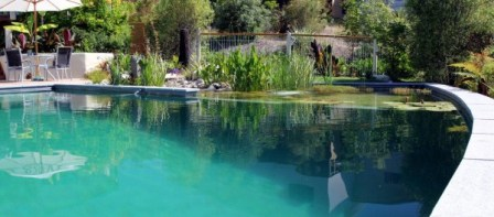 As Well As Being Natural, Biotop Pools Have Another Major Benefit Over  Conventional Pools; They Look Fabulous All Year Round. Even In The Middle  Of Winter, ...