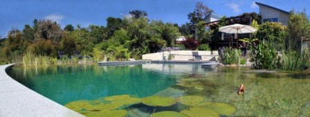 Eco Friendly Swimming Pools Nz Design Auckland Wellington Christchurch Natural Above Ground