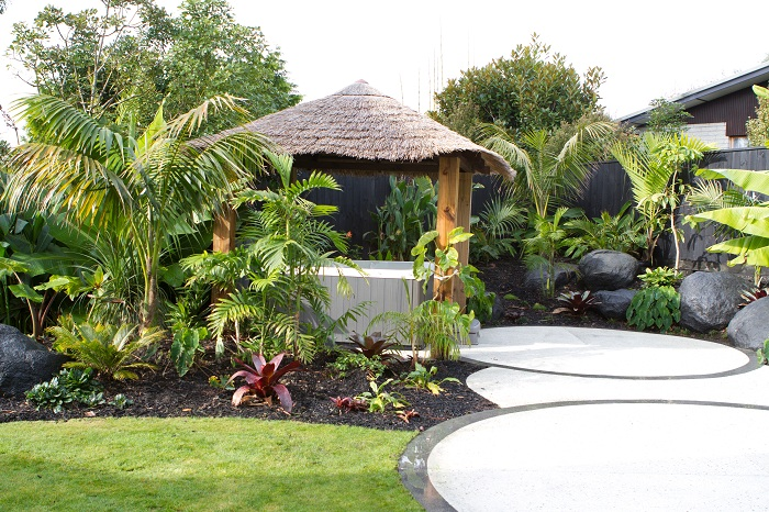 Find ideas search results blog forum gardening for Small garden designs nz
