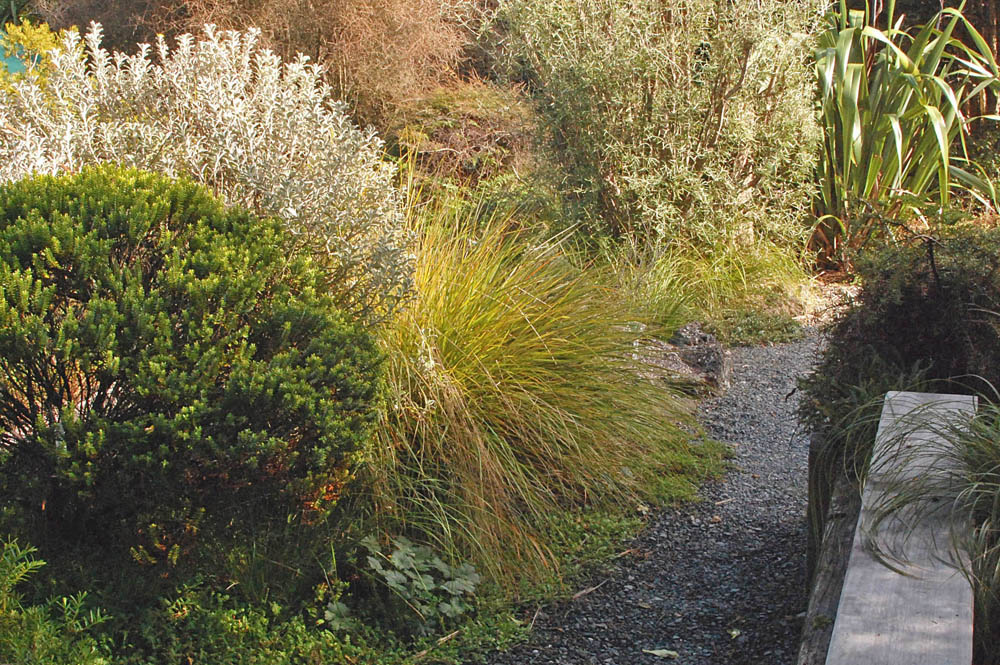 Does natural native does native natural for Native garden designs nz