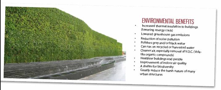 Green Walls | Natural Habitats | Sandra Batley | Nz  Landscapedesign.co.nz Landscape Design ...