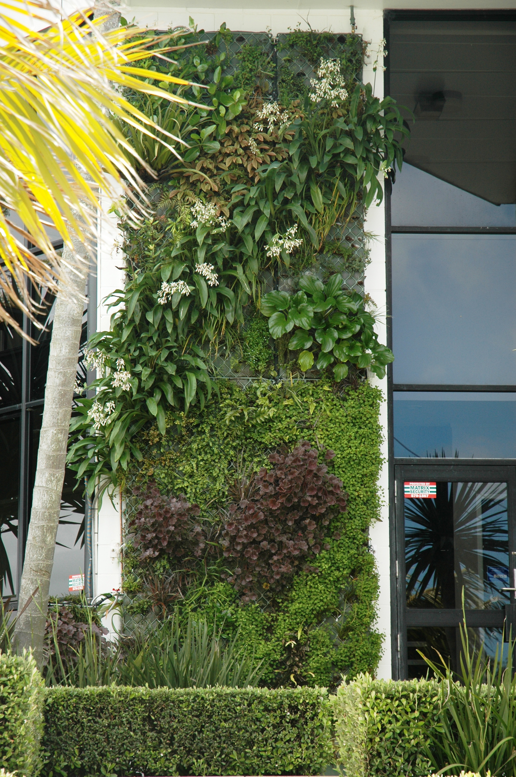 Natural Habitats | Green Wall | Environment | auckland ...