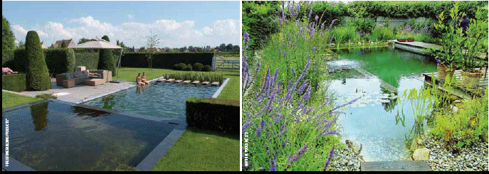 Natural swimming pools new zealand non chemical pools for Pool design nz