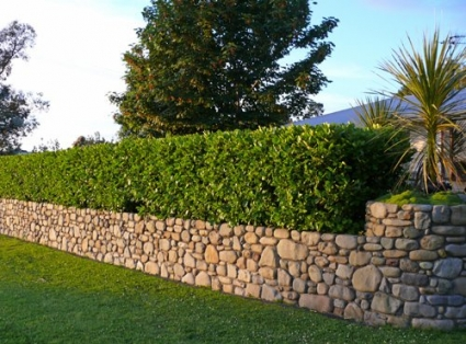 Stone wall pavign by design